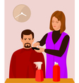 hairdresser and her client vector image