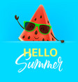 hello summer with watermelon character vector image