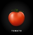 label red big tomato isolated on black vector image vector image