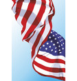 national flag of the usa vector image vector image