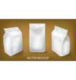package in three foreshortenings vector image vector image