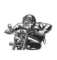 vintage ferocious bulldog head biker vector image vector image