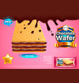 chocolate wafer ads background vector image vector image