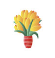 flat cartoon with yellow tulip in vase isolated on vector image