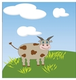 Little jersey cow with a cocked head and blue eyes vector image