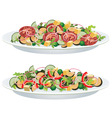 vegetable salads vector image