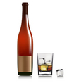 bottle and glass with whiskey vector image