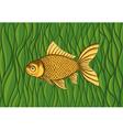 goldfish on a background green algae vector image