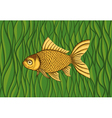Goldfish on a background of green algae vector image