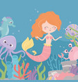 mermaid crab octopus seahorse coral reef algae vector image vector image