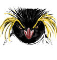 Rockhopper penguin vector image