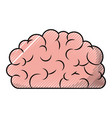 brain side view in colored crayon silhouette with vector image vector image