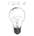 Electric lightbulb vector image vector image