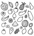 fruit doodle element vector image