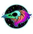 multicolored colored bird skull on black vector image