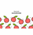 peaches background vector image vector image