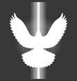 pigeonsign of holy spirit vector image