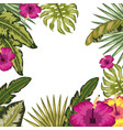 tropical leaves and flowers background vector image vector image