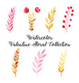 watercolor valentine floral collection vector image vector image