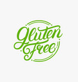 gluten free hand written lettering logo label vector image vector image