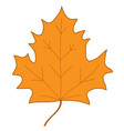 maple leaf orange sign 407 vector image vector image