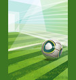 soccer field with goal ball and text vector image