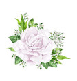 white rose flower in watercolor style isolated on vector image vector image