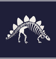 white skeleton and bones of a stegosaurus on blue vector image vector image