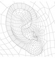 wireframe model human ear side view 3d