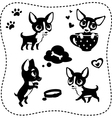Set of dog silhouettes Chihuahua vector image