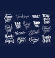 bundle of modern thank you inscriptions or vector image vector image