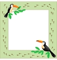 Frame with toucans vector image