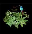 hummingbird tropic arrangement vector image vector image