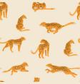 leopard animal cheetah still in motion pattern vector image vector image