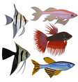 set of cartoon aquarium fish vector image