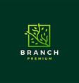tree branch square leaf tree logo icon vector image vector image