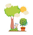 tree plant with houseplant in the landscape vector image