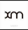 xm initial letter split lowercase modern monogram vector image vector image