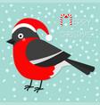 bullfinch winter red feather bird santa hat merry vector image