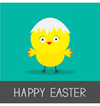 Easter chicken and eggshell Flat design style Card vector image