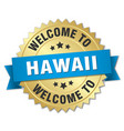 hawaii 3d gold badge with blue ribbon vector image vector image