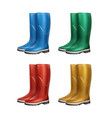 set of dubber boots vector image