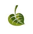 Simple green deciduous tree leaf stylized nature vector image vector image