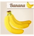 Banana Detailed Icon vector image vector image