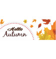 hello autumn semicircle maple leaf background vect vector image vector image