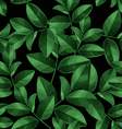 leaf pattern background vector image vector image
