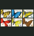 set postage stamps with various butterflies vector image vector image