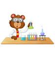 a lap bear character vector image vector image