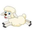 Cute sheep cartoon jumping vector image vector image