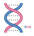 dna cartoon icon vector image vector image